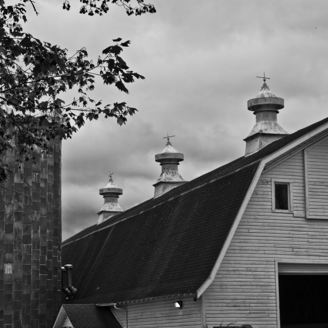 """Barn & Silos"" stock image"