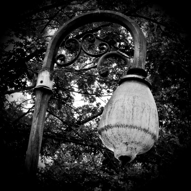 """Street Lamp"" stock image"