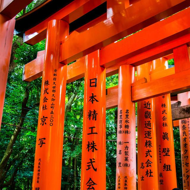 """Shinto shrines in Kyoto"" stock image"
