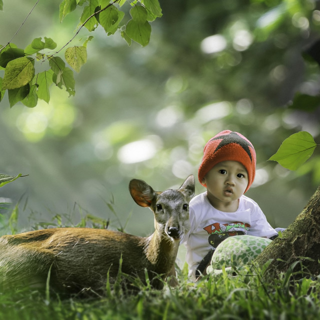 """kids and deer"" stock image"