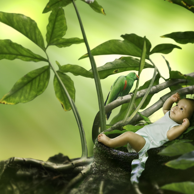 """""""Little Baby and Bird"""" stock image"""