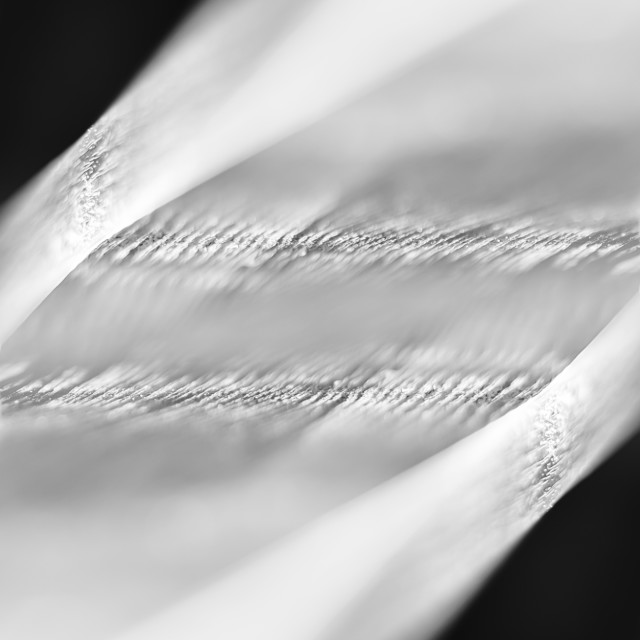 """""""Diagonal black and white wood abstraction"""" stock image"""