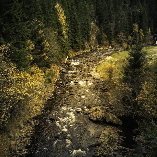 """""""Streaming through Autumn"""" stock image"""