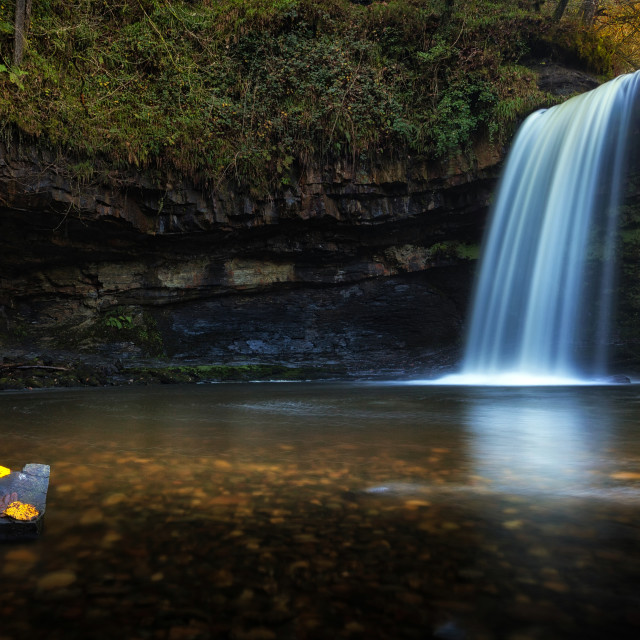 """Autumn leaves at Sgwd Gwladus waterfall"" stock image"