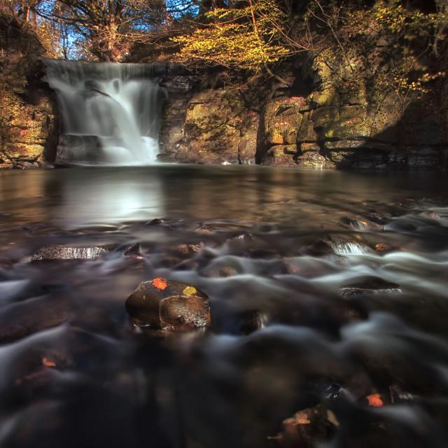 """""""Neath Abbey waterfalls"""" stock image"""