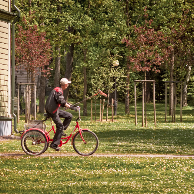 """""""Park Worker Riding a Bike with a Rake"""" stock image"""