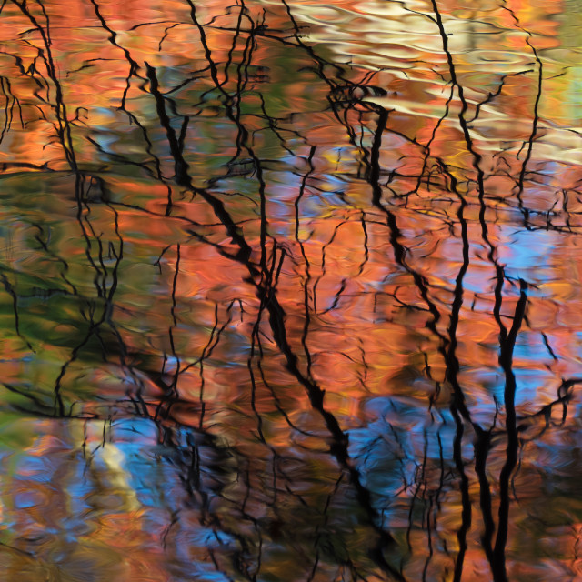 """Fall reflection"" stock image"