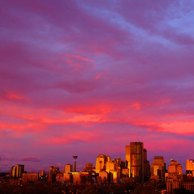 """""""Calgary's Skyline"""" stock image"""