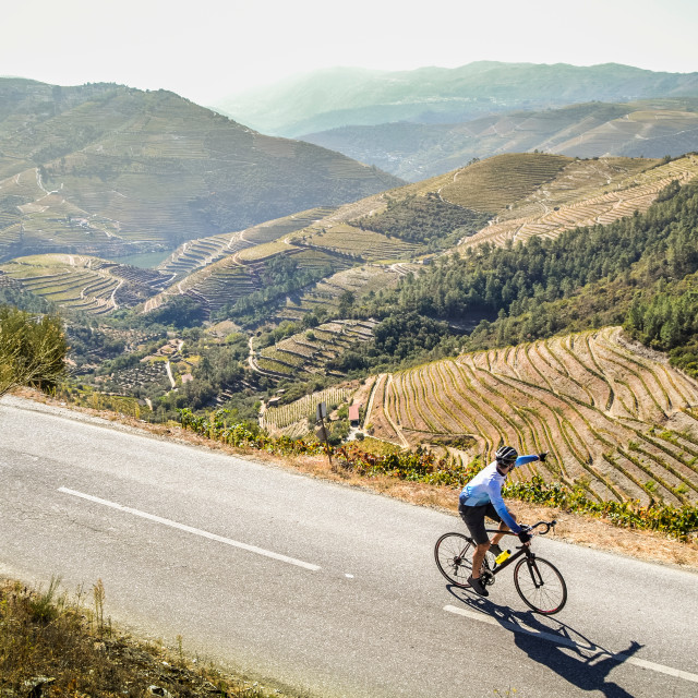 """A cyclist riding around the Douro Valley"" stock image"