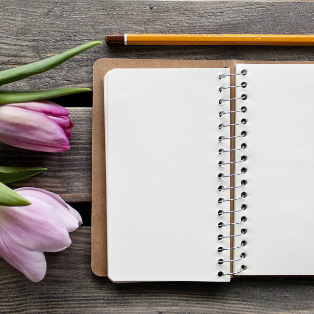 """Notebook and tulips"" stock image"