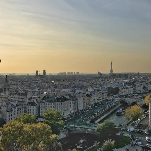 """""""Gargoyle of Notre Dame"""" stock image"""