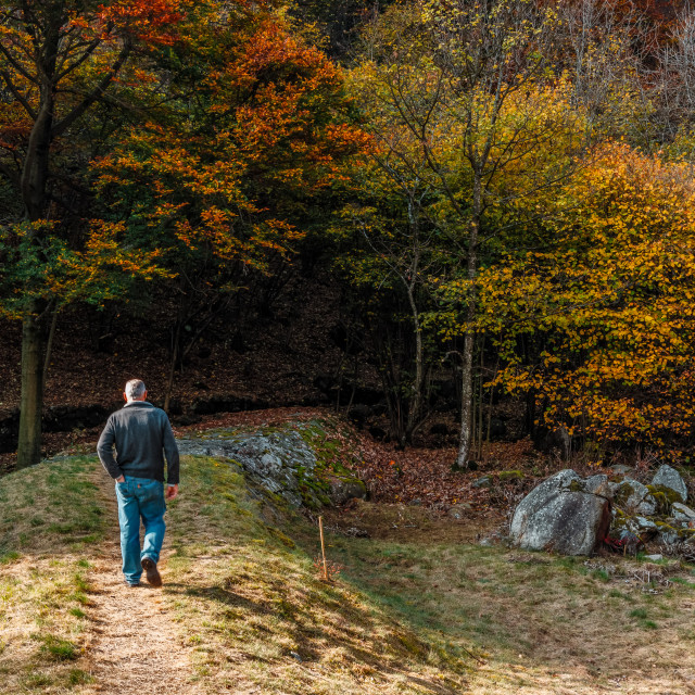 """Man walks in autumn Alpine trail"" stock image"