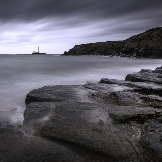 """St Mary's Lighthouse from New Hartley"" stock image"