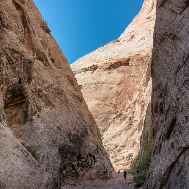 """Capitol Gorge trail in Capitol Reef Utah,"" stock image"