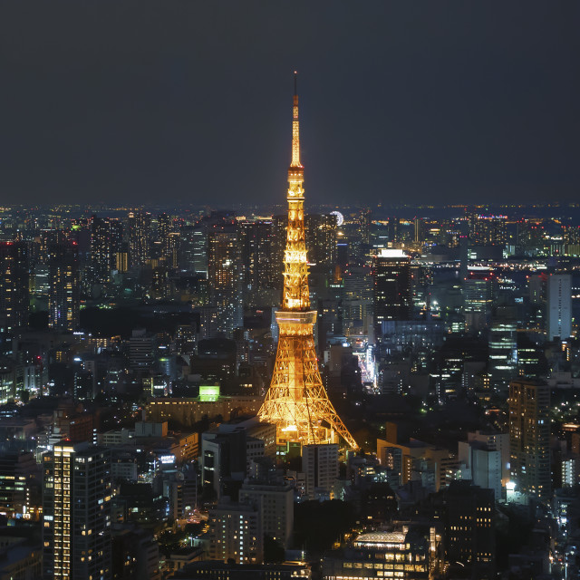 """""""Tokyo Tower and urban city skyline at dusk night"""" stock image"""