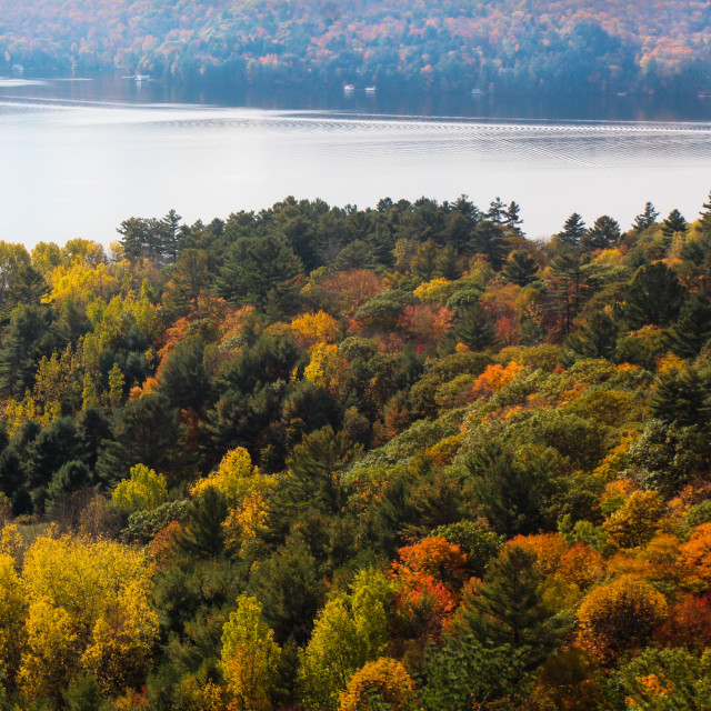 """""""Fall Colors IV"""" stock image"""
