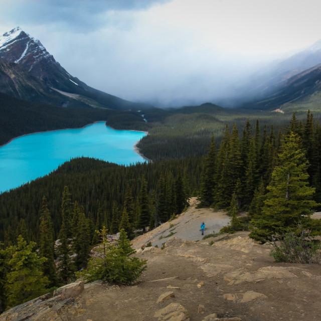 """Beautiful Peyto Lake"" stock image"