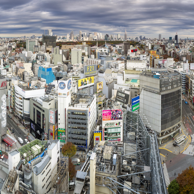 """Japan, Tokyo, elevated view over Shibuya Ward towards the Shinjuku skyline"" stock image"
