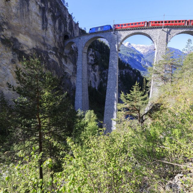 """Bernina Express train on Landwasser Viadukt, Filisur, Albula Region, canton..."" stock image"