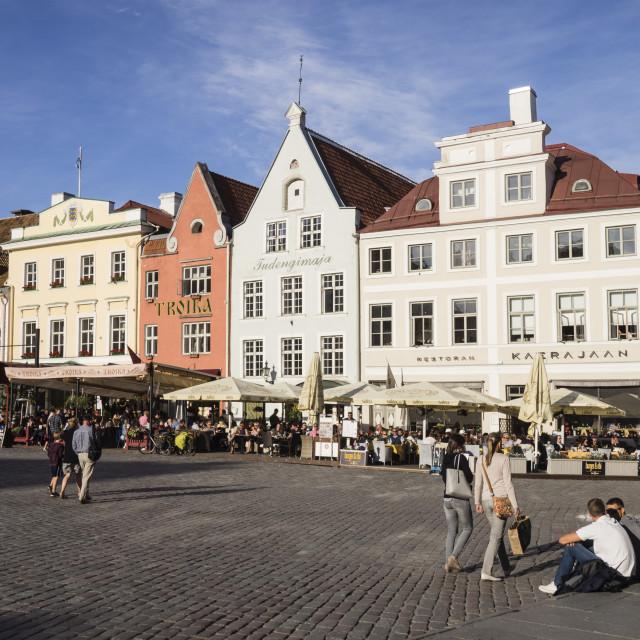 """""""Town Hall Square, Tallinn, Estonia, Baltic States, Europe"""" stock image"""