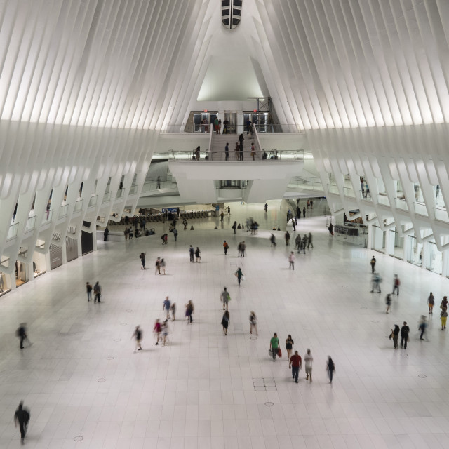 """Calatrava's World Trade Center Oculus Shopping Mall, New York, USA"" stock image"
