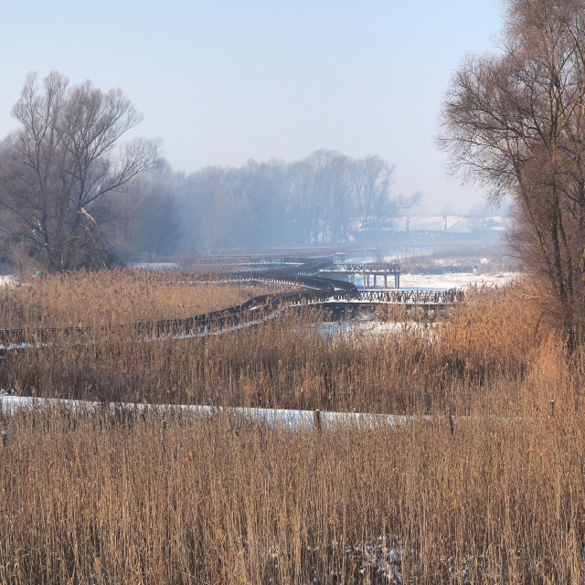"""frozen bordwalk in countryside"" stock image"