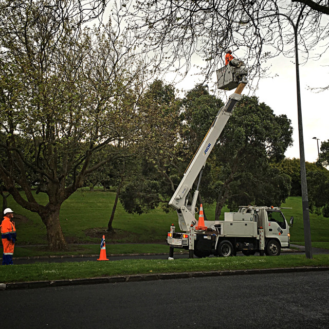 """Electricians Repair Streetlight Auckland"" stock image"