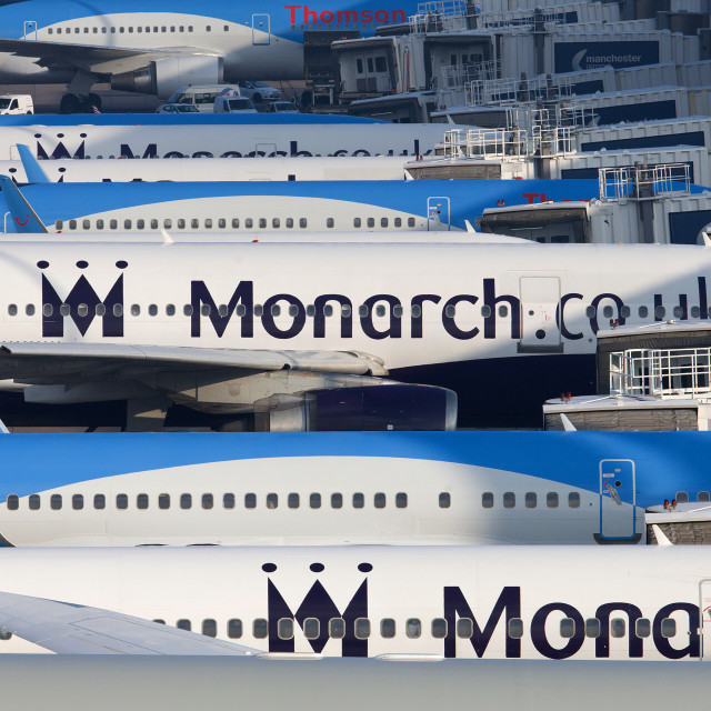 """""""Monarch On Stand"""" stock image"""