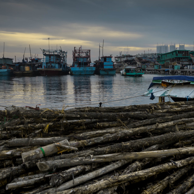 """""""The docks with the logs.."""" stock image"""