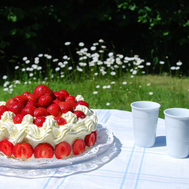 """Fresh strawberry cake in a garden"" stock image"