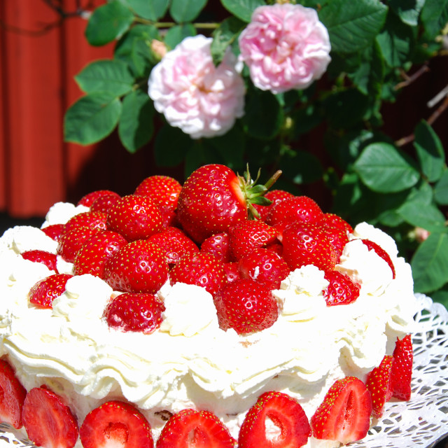 """Homemade strawberry cake"" stock image"