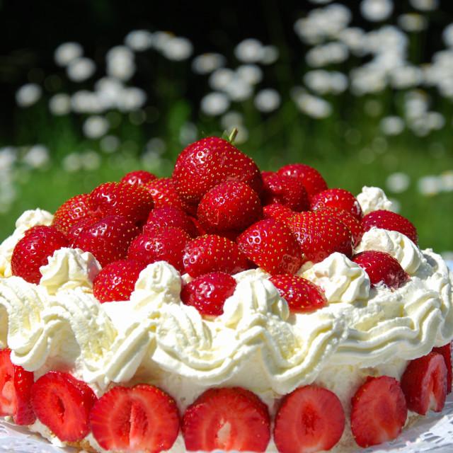 """Fresh strawberry cake closeup"" stock image"