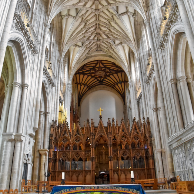"""""""Winchester Cathedral"""" stock image"""