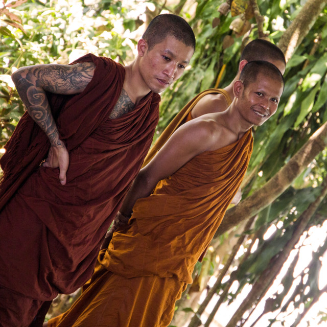 """Buddhist Monks"" stock image"