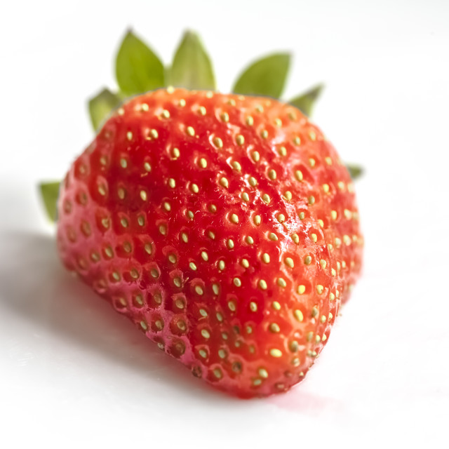 """Single Strawberry"" stock image"
