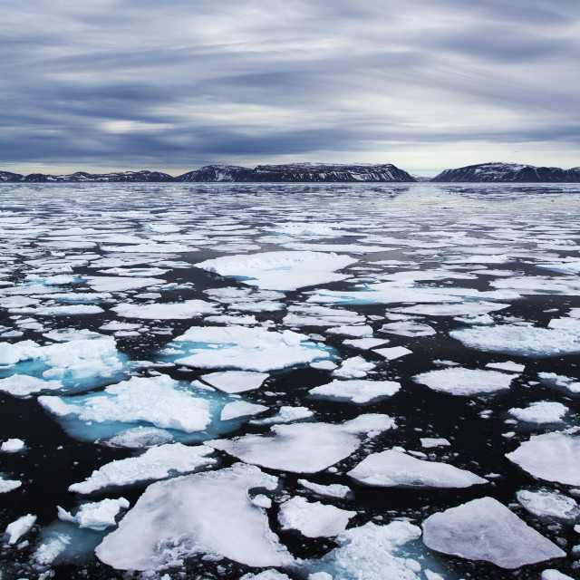 """Sea Ice"" stock image"