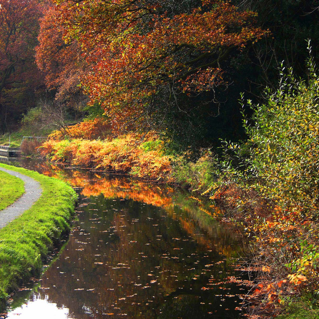 """""""Swansea Valley canal"""" stock image"""