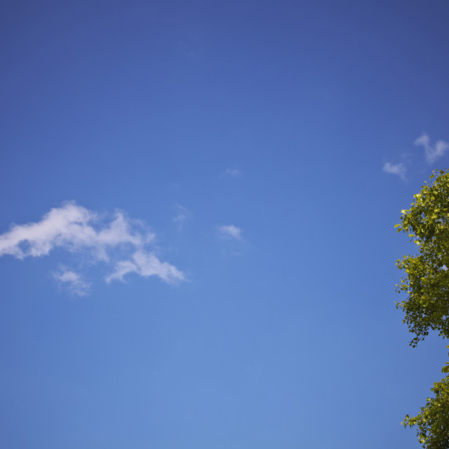 """""""Blue sky with one white cloud"""" stock image"""