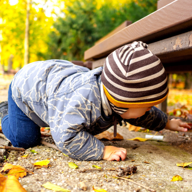 """young boy in an autumn park searching something"" stock image"