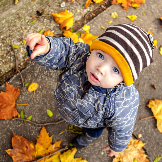 """young boy in an autumn park with a lot of leaf spreaded all arou"" stock image"