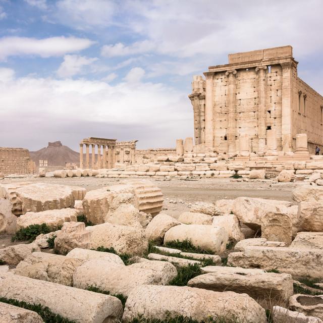 """Temple of Bel. Palmyra, Syria"" stock image"