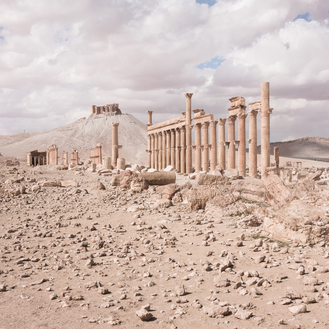 """""""The Camp of Diocletian. Palmyra, Syria"""" stock image"""