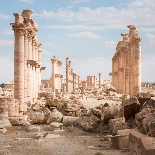 """""""Great Colonnade. Palmyra, Syria"""" stock image"""