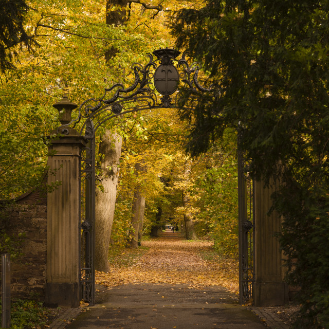 """Autumn in Karlsruhe"" stock image"