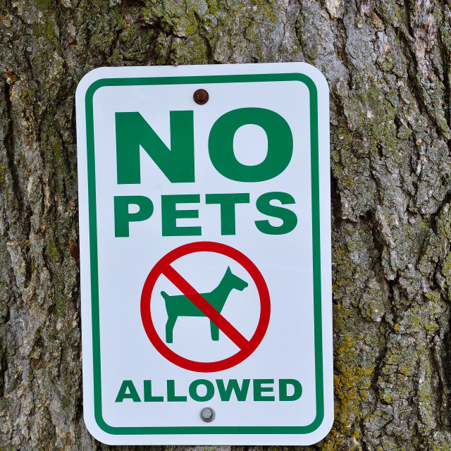 """No pets allowed sign on tree."" stock image"