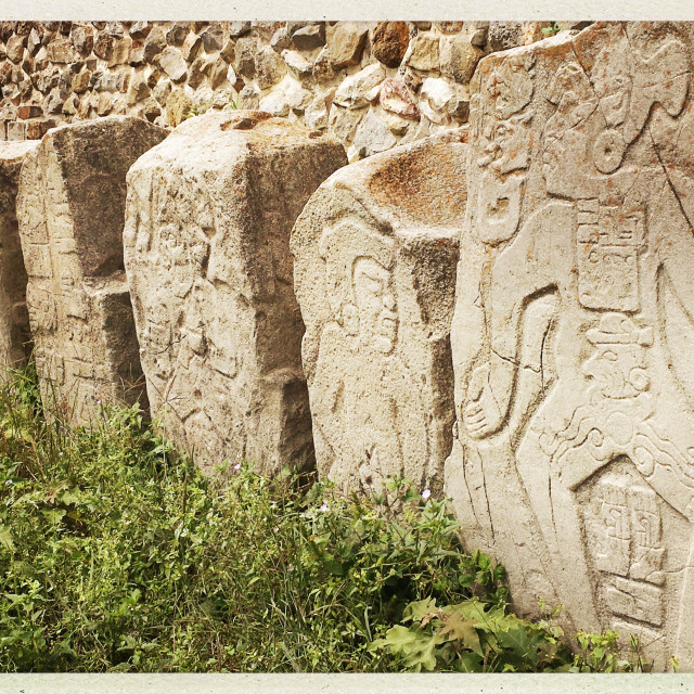 """""""Carved relief stones of Monte Albán"""" stock image"""