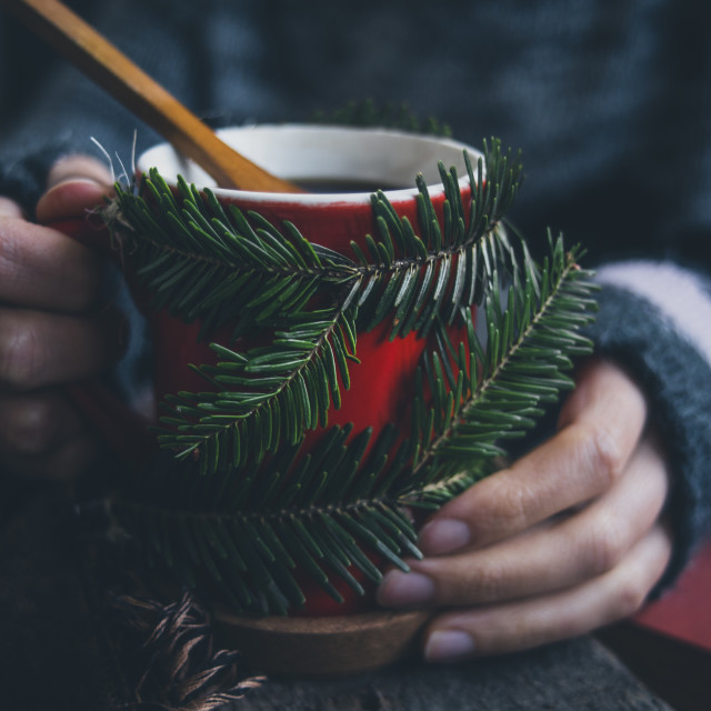 """""""Winter time"""" stock image"""