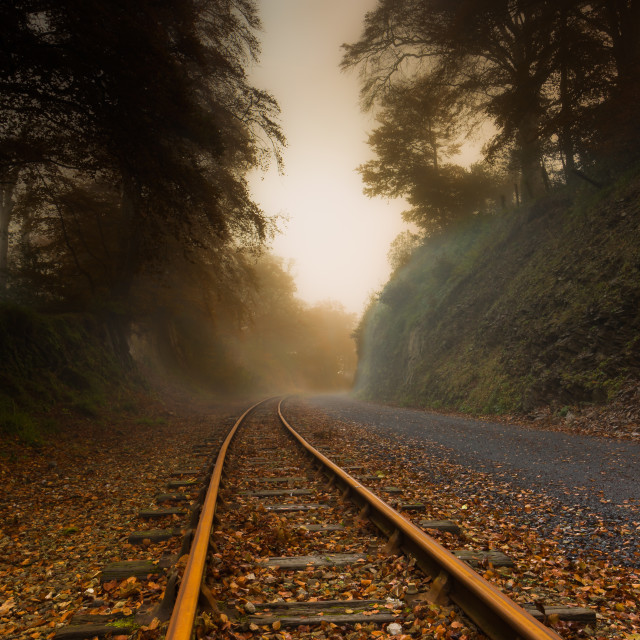 """Autumn Tracks"" stock image"
