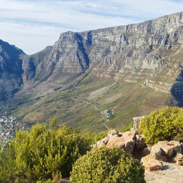 """Table Mountain"" stock image"