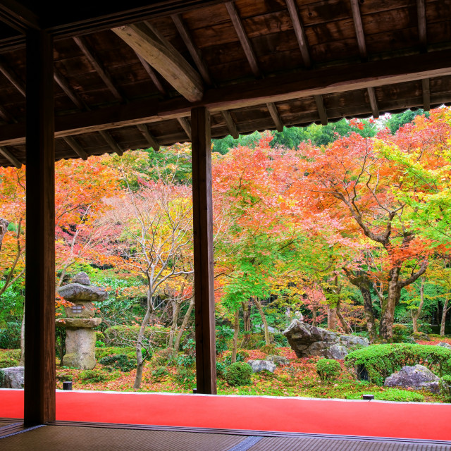 """""""Enkoji temple with fall colors, Kyoto"""" stock image"""
